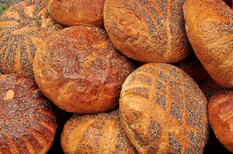 Download Bread of life stock photo. Image of food, live, comfort - 15731402