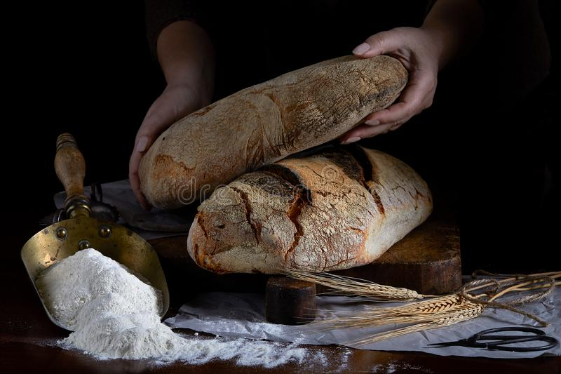 Bread Loaf In Baker Hands royalty free stock photo