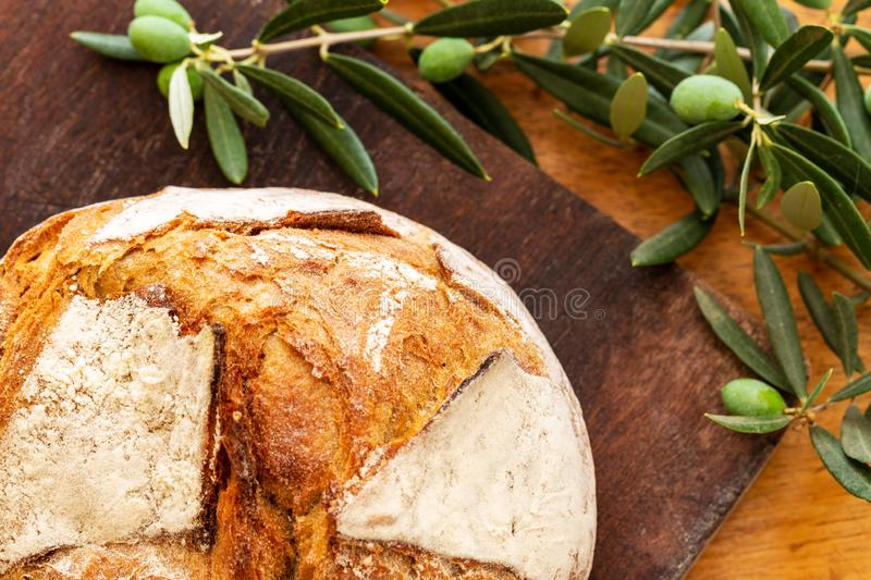 Bread loaf on a wooden board with green olives on branch with leaves over a used oak wood background. Bread loaf covered with flour, on a dark wooden board with stock image