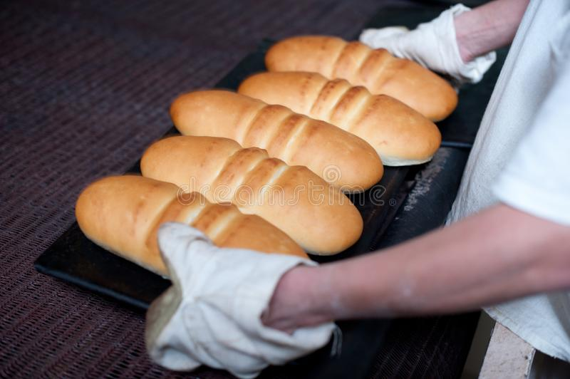Bread making factory. Fresh industry plant prepare stock image