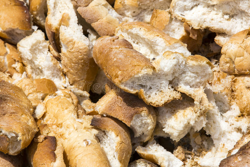 Bread thrown in the trash. Baguettes baked bread thrown on trash royalty free stock photo