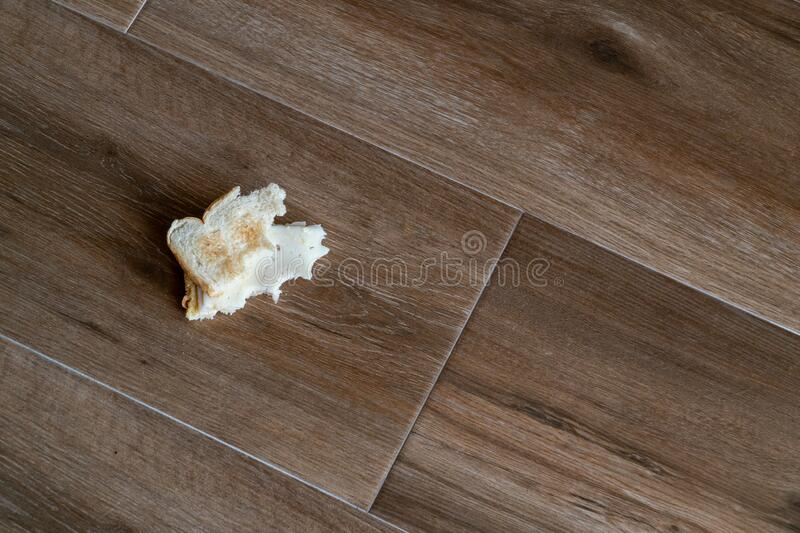 Bread tossed to the floor. Half Eaten Sandwich thrown on the floor. Discarded Sandwich. Thrown into the trash food. Concept.  stock photo