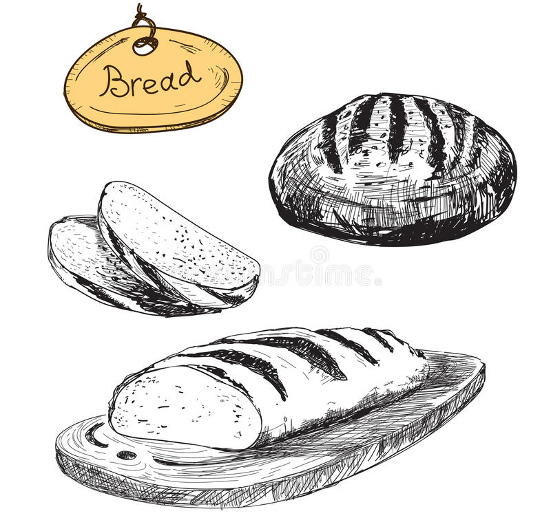 Bread. Vector hand drawn illustrations set. Eps 8 royalty free illustration