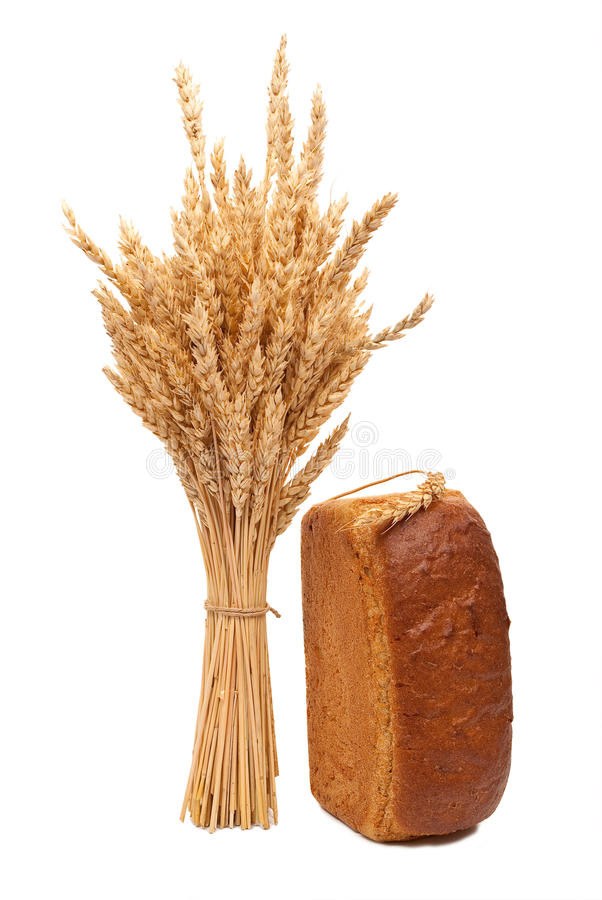Bread with wheat and ears stock photography