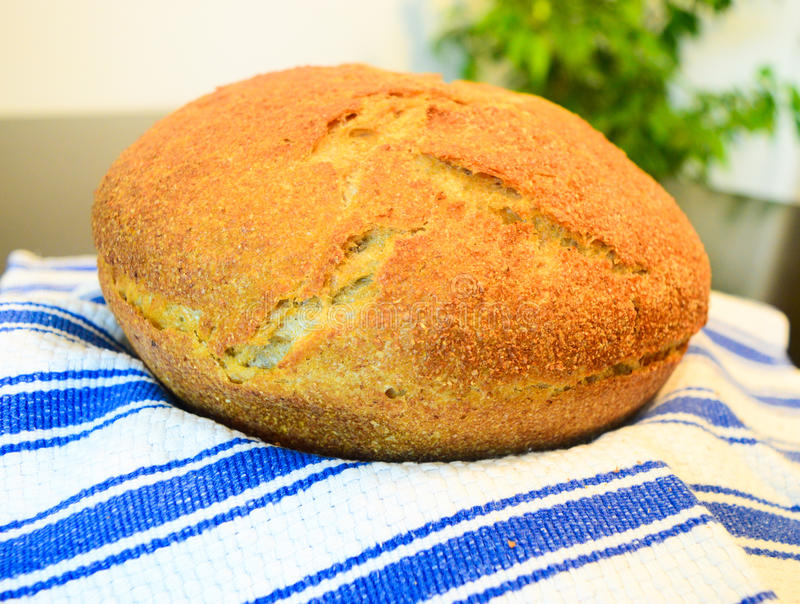 Bread whole grain stock photo