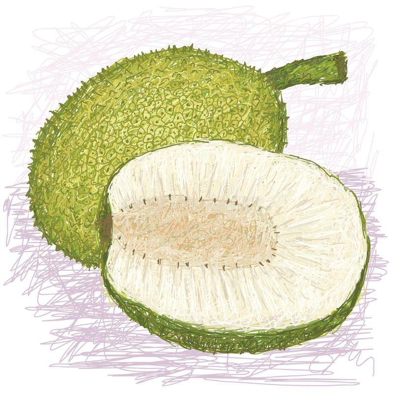 Download Breadfruit Skinned Rozmaitość Całą I Połówkę Pokrajać Ilustracja Wektor - Ilustracja złożonej z natura, kopiasty: 28956610