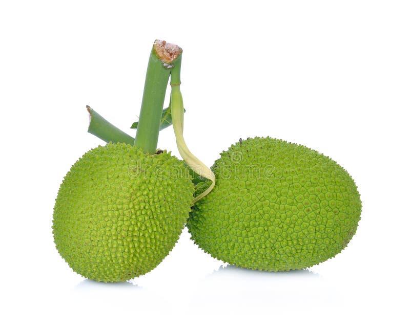 Breadfruit;young fruit jackfruit on white background royalty free stock photos