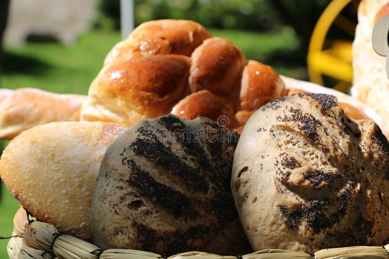 Breads and baked goods. many different breads outside with beautiful nature background. food and drink. organic and healthy food. Concept royalty free stock photo