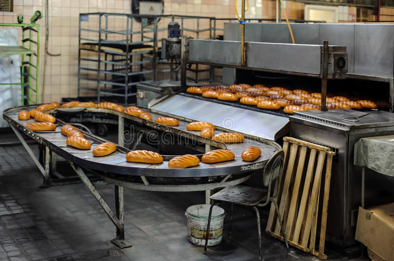 Breads on production line at bakery royalty free stock photography
