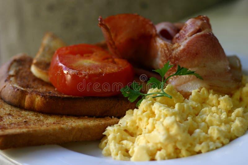 Download Breakfast stock photo. Image of bacon, tasty, breakfast - 1410000
