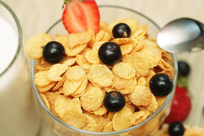 Download Breakfast stock photo. Image of delicious, flake, milk - 33859692