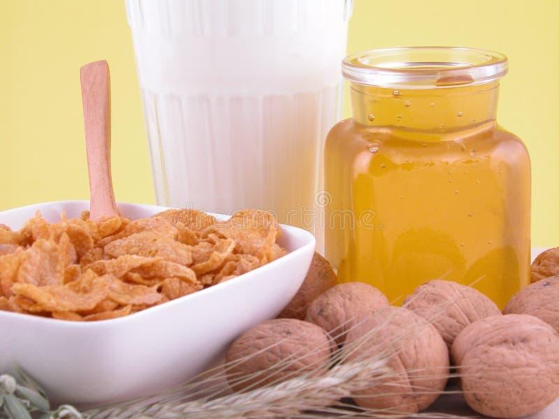Breakfast - on diet stock images