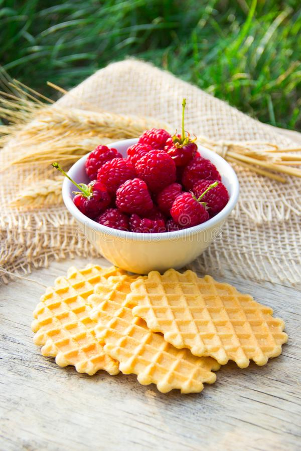 Breakfast in the garden. Fresh raspberries and homemade waffle cookies. royalty free stock photography