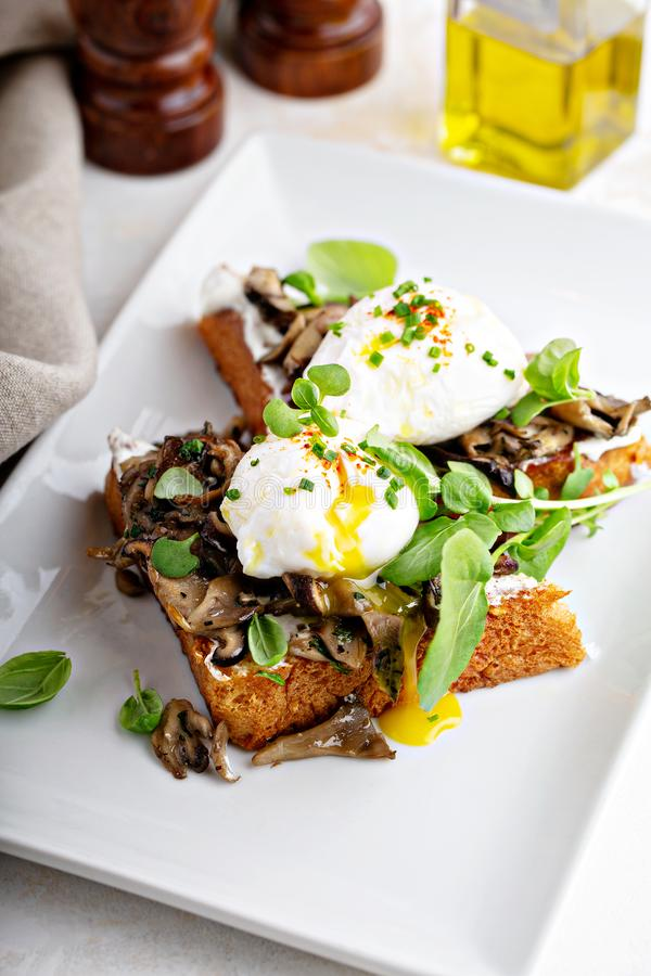 Breakfast toast with mushrooms and poached eggs stock image
