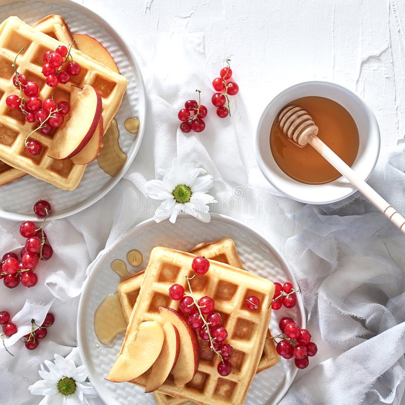 Breakfast, traditional belgian waffles with fresh fruit and hone. Flat lay of traditional belgian waffles with fresh fruit and honey on white background royalty free stock image