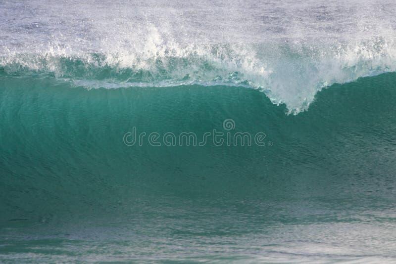 Breaking Wave stock image