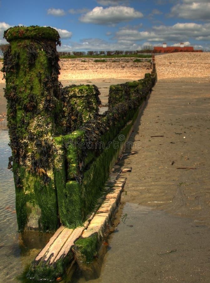 Download Breakwater stock photo. Image of covered, breakwater - 25689006