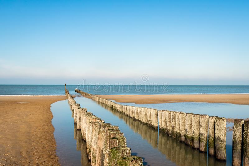 Breakwater made of a double row of wooden poles. At the North Sea beach of the Dutch former island Walcheren. The poles are reflected in the mirror smooth water royalty free stock image