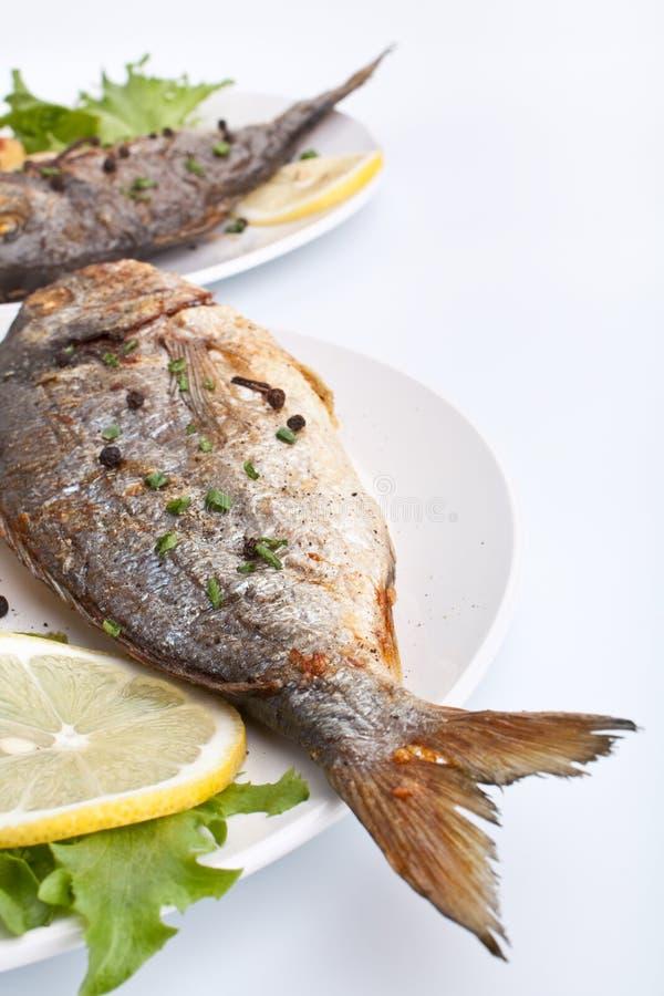 bream λαχανικά θάλασσας ψαριών στοκ φωτογραφία