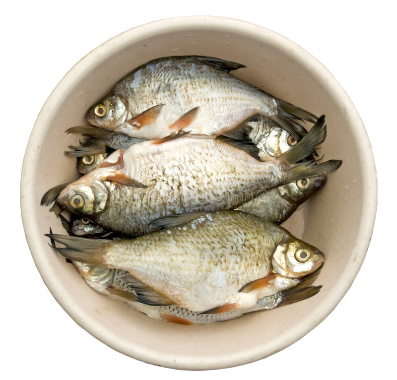 Free Bream For A Flue-curing Royalty Free Stock Images - 5632729