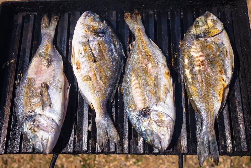 Bream sea fish on grill. Bream fresh sea fish on grill view stock image