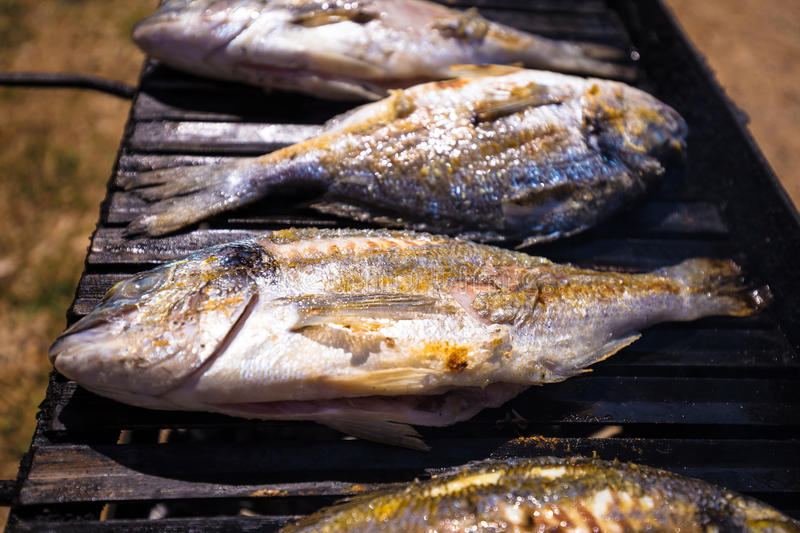Bream sea fish on grill. Bream fresh sea fish on grill view royalty free stock images