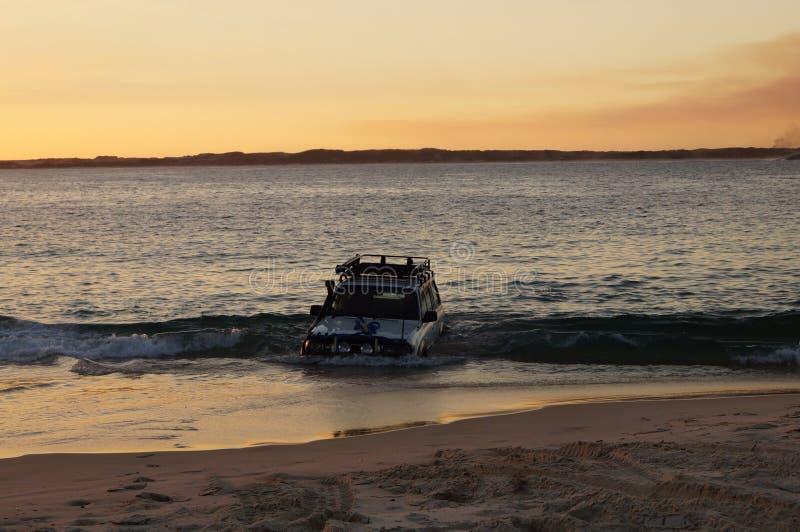 Breamer fjärd västra Australien royaltyfri bild