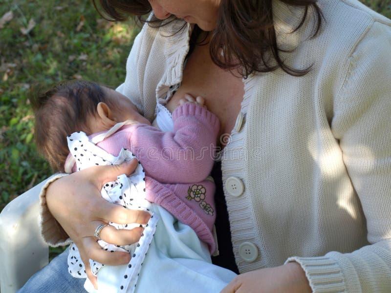 Breastfeeding fotografia stock