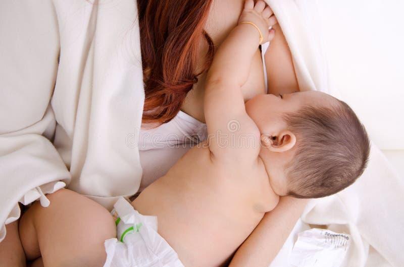 Breastfeeding royalty free stock photography