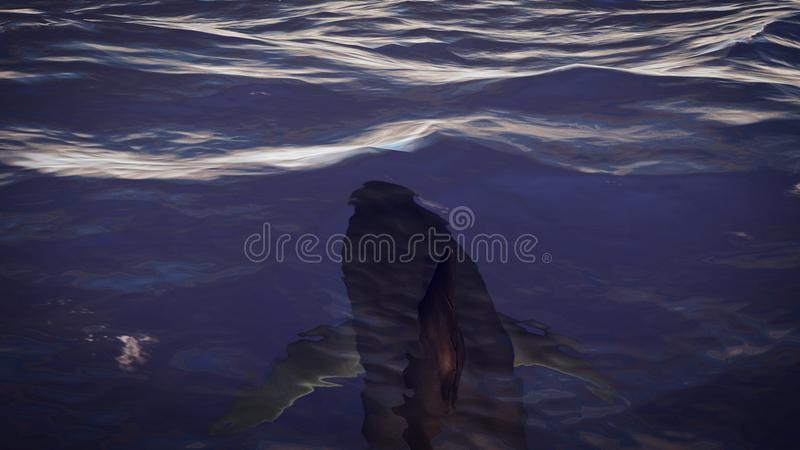 Perilous Shark Swims Underwater. A breathtaking 3d illustration of a hazardous shark with big fins and sharp teeth moving in dark blue sea waters just a bit royalty free illustration