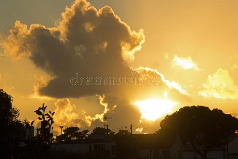 Breathtaking shot of the golden sky with clouds during the sunset and silhouettes of trees below royalty free stock image