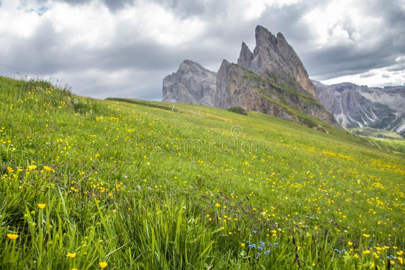 Breathtaking view of Seceda 2,500m Mount Peak with Puez Odle massif in Dolomites stock image