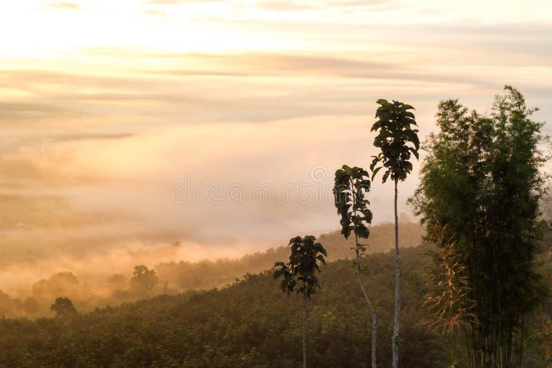 Breathtaking Views in the morning at Yun Lai viewpoint,Pai,Mae Hong Son,Northern Thailand. stock images