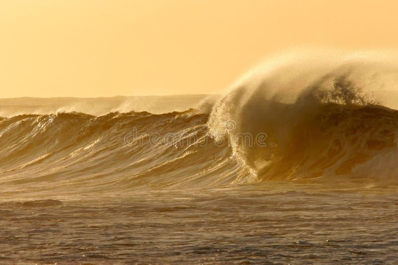 Brechende Welle stockfotos