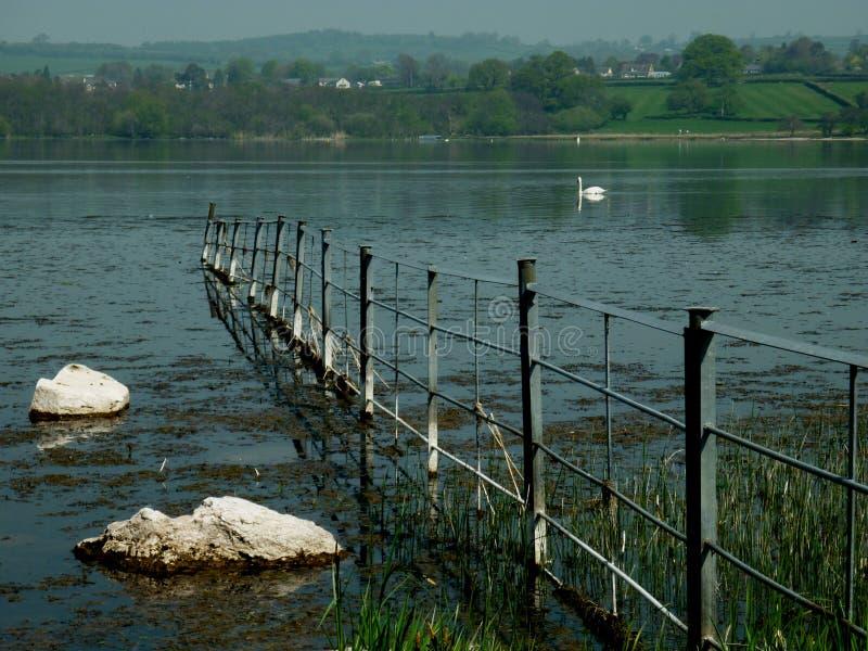 Brecon烽火台,与天鹅的湖风景 免版税库存照片