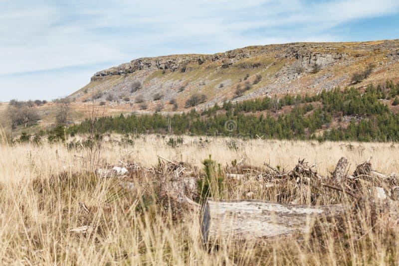 Brecon светит ландшафт на предыдущей весне в Уэльс, Великобритании стоковая фотография rf