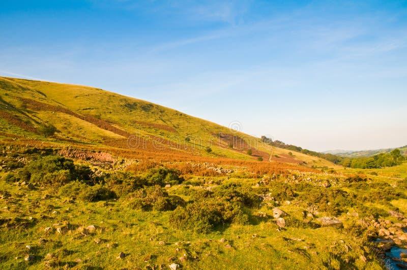Download Brecon Beacons stock photo. Image of brecon, british, animals - 6849320