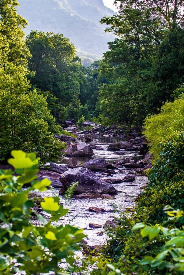 Bred flod arkivbild