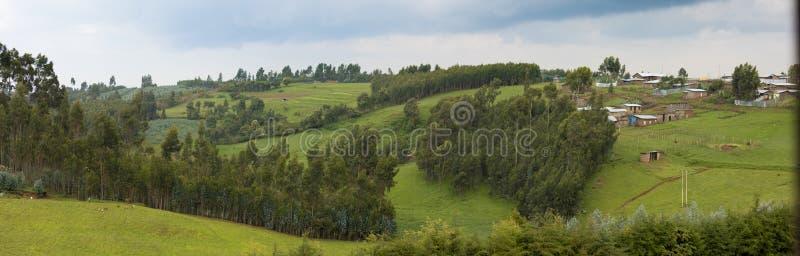 Bred panorama av den etiopierlantgårdar och byn arkivfoto