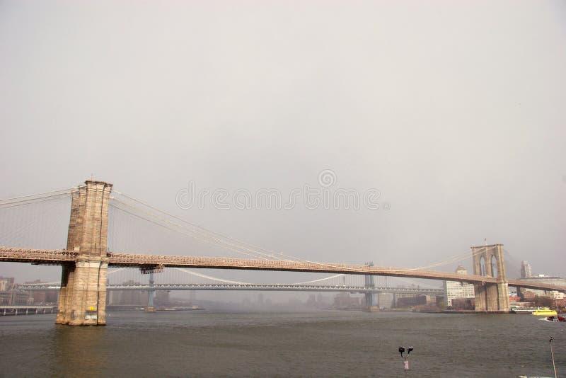 Bred sikt av den Brooklyn bron med den Manhattan bron bakom arkivbilder