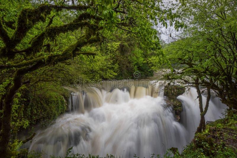 Bred vattenfall för Martvili kanjon royaltyfri fotografi