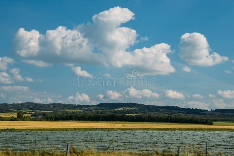 Brede hoek Geploegde Gebieden dichtbij in Zuidwestenfrankrijk stock foto's