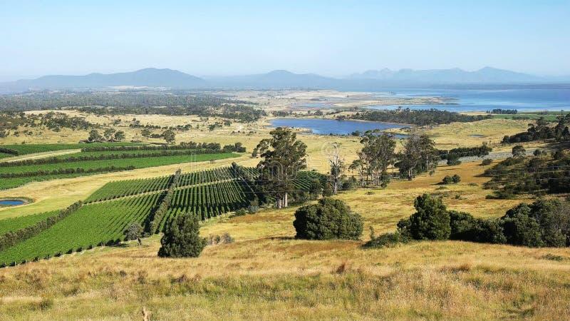 Brede mening van groot oesterbaai en freycinet schiereiland in Tasmanige stock foto's