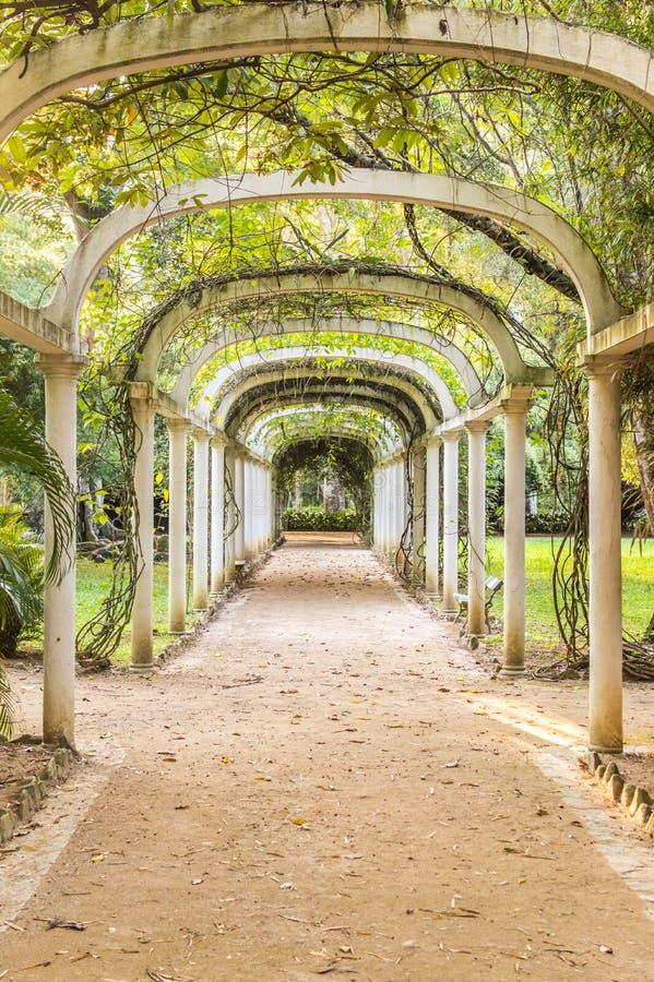 Brede rijweg met mooi aangelegd landschap in Rio de Janeiro Botanical Garden, Brazilië royalty-vrije stock afbeeldingen