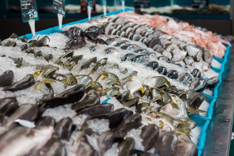 Brede waaier van verse vissen in supermarkt op ijs royalty-vrije stock foto