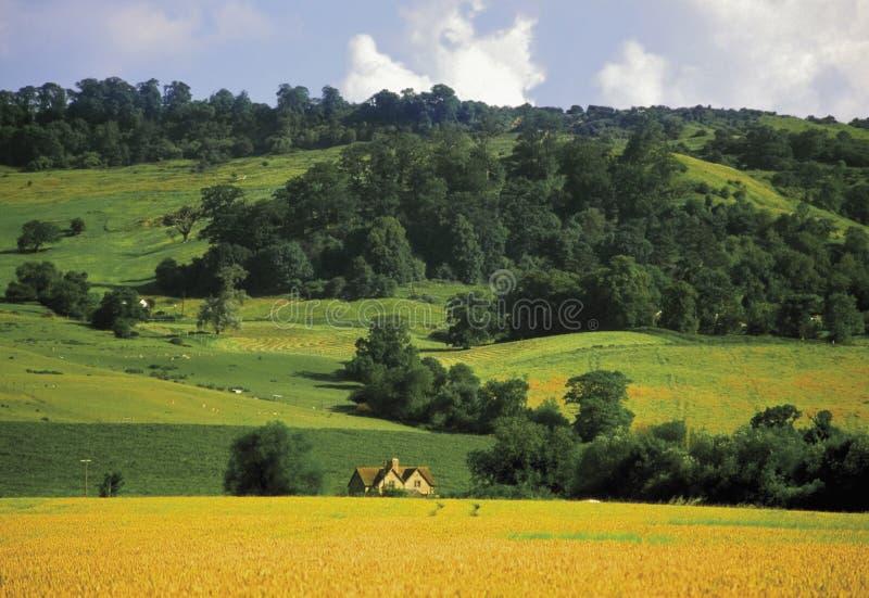 Bredon hill stock photo