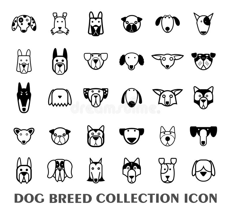 Breed dog collection icon, vector.  vector illustration