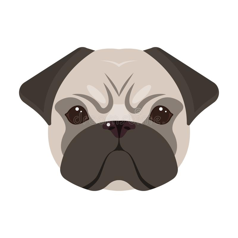 Breed of a dog, a pug.Pug`s muzzle single icon in cartoon style vector symbol stock illustration web. Breed of a dog, a pug.Pug`s muzzle single icon in cartoon stock illustration