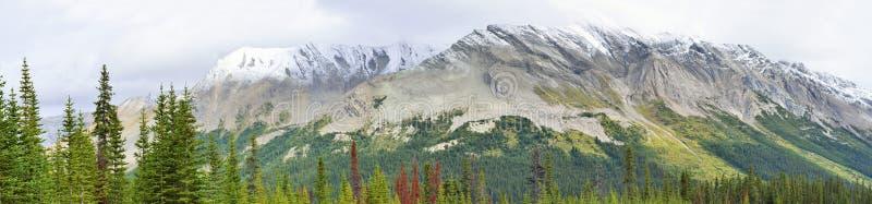 Breed panorama van het alpiene landschap langs het Icefields-Brede rijweg met mooi aangelegd landschap tussen Jaspis en Banff in  royalty-vrije stock foto's