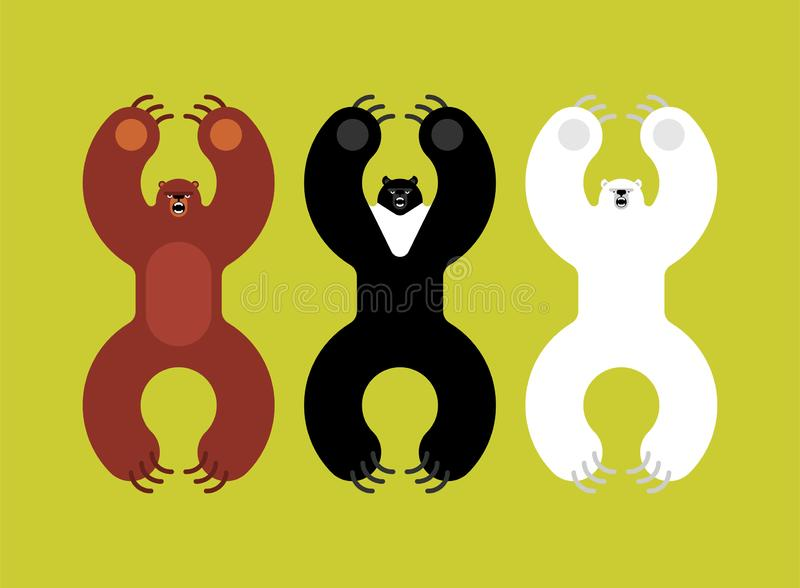 Breeds bears set. Grizzly and himalayan bear and polar bears. evil isolated cartoon style. Wild predator attacks royalty free illustration